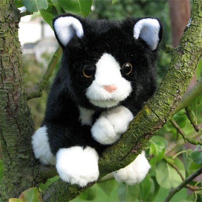 Living Puppets hand puppet black and white cat