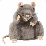 European wildlife hand puppet rat, grey