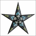 earth friendly starlightz jaipur black/turquoise